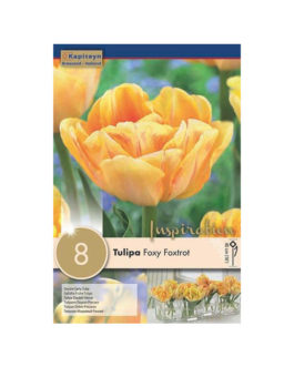 Bolsa Tulipán Foxy Foxtrot