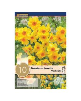 Bolsa Narcissus tazetta  Martinette