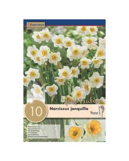 Bolsa Narcissus jonquilla Yazz